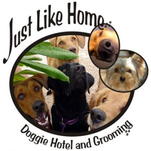 Just Like Home Dog Grooming and Boarding Las Vegas